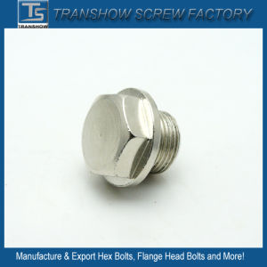 Nickle Plated Big Flange Head Bolt pictures & photos