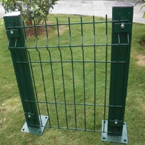 Wire Mesh Fence Eurofence Welded Mesh for Garden pictures & photos