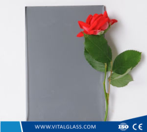 Tempered Blue Grey Plain/Float/Reflective/Laminated/Stained/Patterned/Figured Glass with Ce& ISO9001 pictures & photos