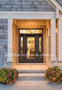 Modern Style Tinted Glass Blackswing Wood Door for Australia pictures & photos