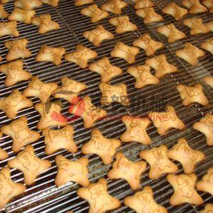 Hot Sale 500kg Per Hour Center Filling Biscuit Production Line pictures & photos