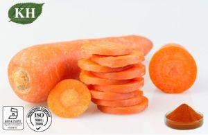 100% Natural Carrot Extract Powder, Beta Carotene Powder pictures & photos
