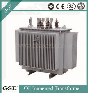 Oil-Immersed Laminated-Core Energy-Saving Transformer Series/Power Distribution Transformer pictures & photos
