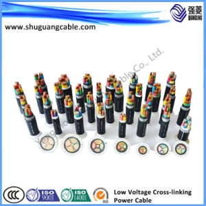 Fluoride Insulation PVC Sheath Armored Control Cable pictures & photos