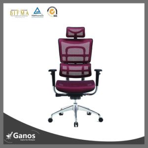 BIFMA Ergonomic Chair High Back Executive Mesh Chair pictures & photos