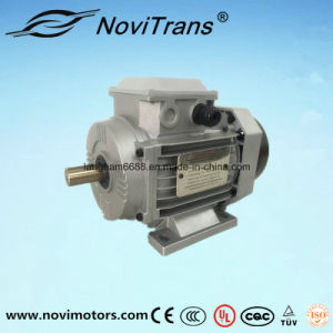 Self-Protection From Overloading Synchronous Electric Motor 750W pictures & photos