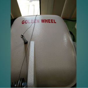 Strobel Machine Disk Feed Shoes Insole Stitching Overseam Machine (CST-4060) pictures & photos