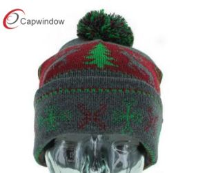 The Colorful Beanie Hat & Knitted Hat pictures & photos
