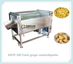 Mstp-500 Stainless Steel Ginger Washing Peeling Machine, Melon Peeler Washer Machine pictures & photos