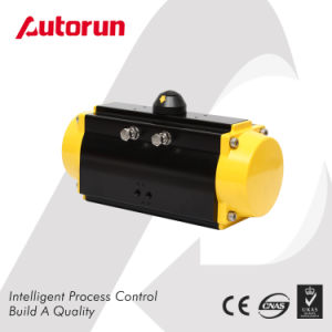 Chinese Wenzhou Manufacturer Rt Quarter Turn Pneumatic Actuator pictures & photos