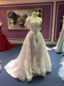 2017 Evening Dress Real Sample pictures & photos