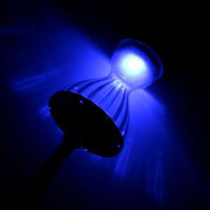 Solar-Powered LED Garden/Landscape Lights, Energy-Saving Dg Skirt Lamp pictures & photos