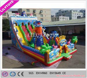 Popular Giant PVC material Inflatable Unique Fun Park Lilytoys pictures & photos