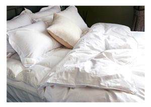 Professional Down/Feather Comforter Quilt Duvet in Hangzhou Factory pictures & photos