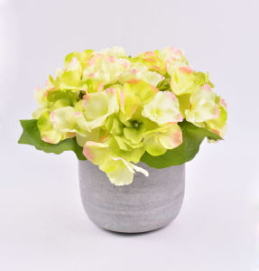 Artificial Big Hydrangea Flowers in Cement Pot for Decoration pictures & photos