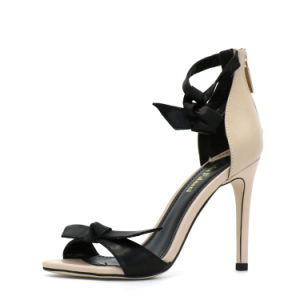 High Buckle Pumps High Heels Shos Summer Shoes pictures & photos