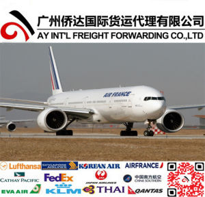 Fast Air Shipping to Paris