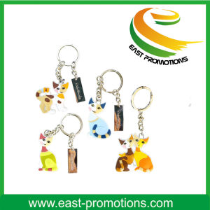 Various Graphs Plastic Keychain for Promotion pictures & photos