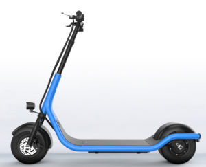 350W Electric Scooter with 48V/10ah pictures & photos