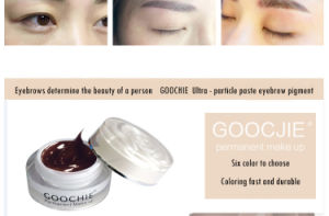 Goochie Glitter Tattoo Permanent Makeup Tattoo Ink pictures & photos