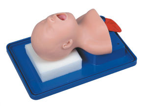 Mct-Ke-015 Child Trachea Intubation Model pictures & photos