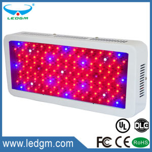100-110W Rectangle LED Grow Light Greenhouse Light Seeding pictures & photos