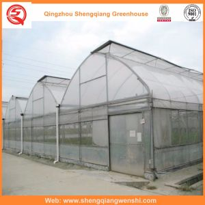Agriculture Multi Span Film Green House for Vegetables pictures & photos