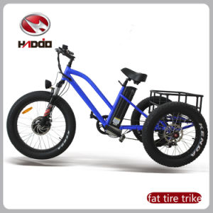 48V 500W Cargo Electric Beach Cargo Tricycle for Adult pictures & photos