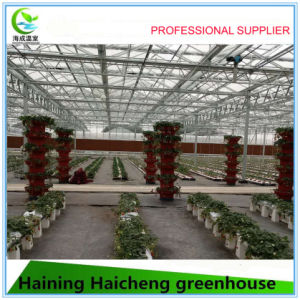 Glass Greenhouse with Morden Hydroponic System pictures & photos