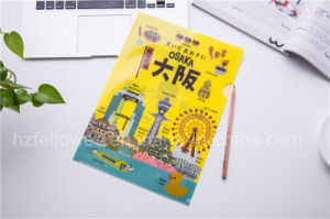 A4 Size Colored L Shape File Folder, Print Folder pictures & photos