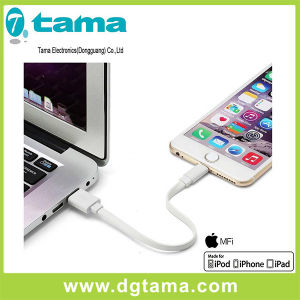 Mfi Certified Ligntning to USB Flat Cable for Apple pictures & photos