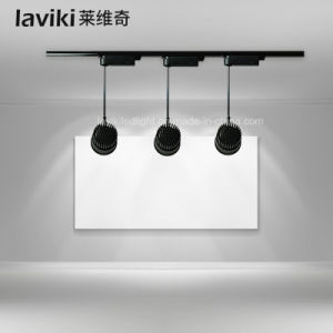 COB LED Track Light with 10-30W pictures & photos