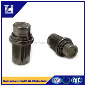 High-Grade Fasteners for Auto/Motorcycle Parts pictures & photos