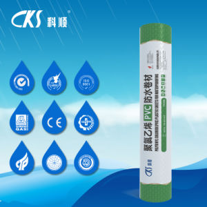 PVC Waterproof Membrane with Heat Trement pictures & photos