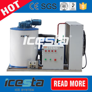 Professional Manufacturer 200kg~1500kg Flake Ice Maker Ice Machine for Seafood pictures & photos