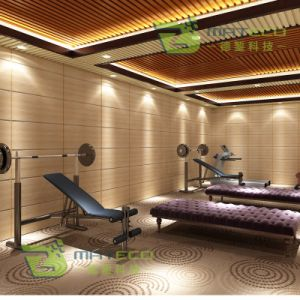 Healthy Wallboard for Building with SGS (Wallboard-169.5X25) pictures & photos