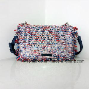 Fashion Style Mini Lady PU Woven Chain Leather Handbags (NMDK-032904)