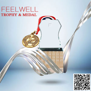 Feelwell Clear Glass Trophy with Scan 2017 Medal Catalog pictures & photos