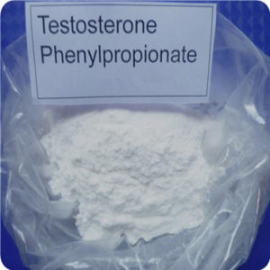 Muscle Building Raw Steroid Testosterone Phenylpropionate Powder