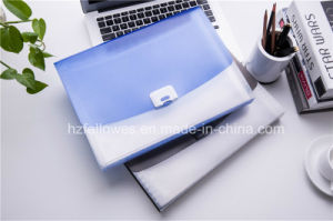 Fashion Plastic A4 Office Stationery File Folder/ Expanding File pictures & photos