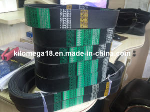 Ribbed Belt in Hot 12pk610 pictures & photos