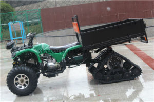 150cc Farm Motor ATV with 10/12inch Snow Tire pictures & photos