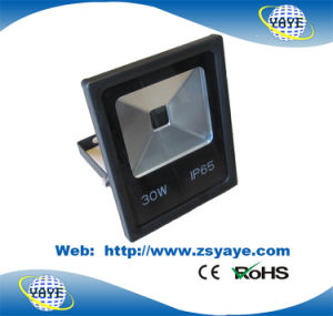 Yaye 18 Newest Design Ce/RoHS Approval 60W LED Flood Light / LED Floodlight/ LED Tunnel Light pictures & photos