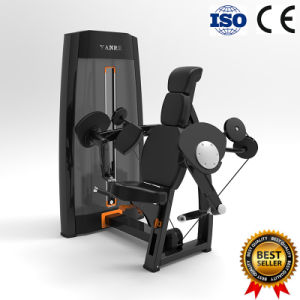 Commercial Gym Fitness Equipment Sports Machine Biceps Curl Top Quality pictures & photos