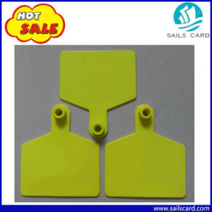 China Supplier Farm Equipment Animal Plastic Cattle Ear Tag pictures & photos