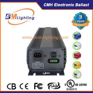 2X315W HID Grow Lighting Digital Ballast Used in Green House pictures & photos