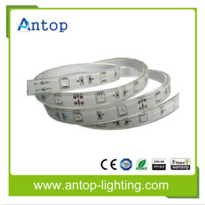Long Life High Brightness DC12V/24V SMD5050 LED Strip pictures & photos