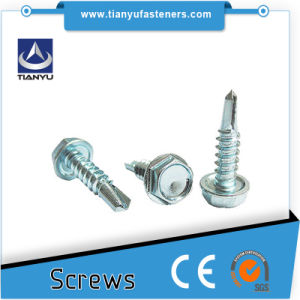 14 X 50mm Galvanised Type 17 Bugle Batten Screws for Timber Wood Decking pictures & photos