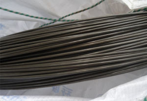 Steel Wire Coil 10b33 Saip for M22 Bolts pictures & photos