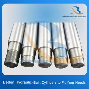 10-10mm Diameter Cylinder Rod pictures & photos
